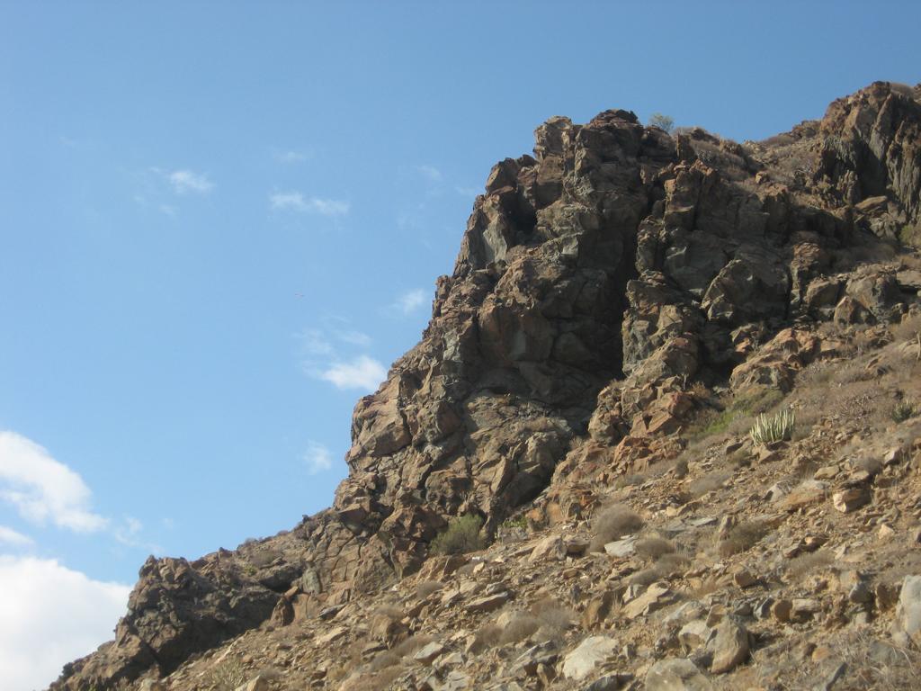 Tenerife Mai 2008 (173).JPG