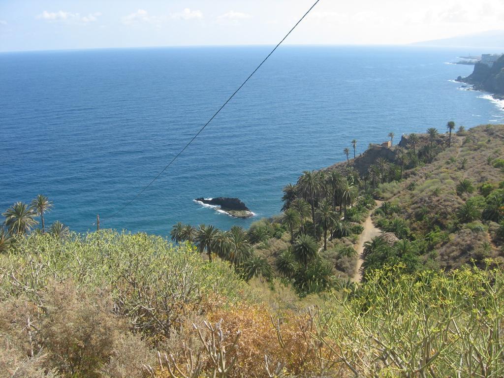 Tenerife Mai 2008 (245).JPG