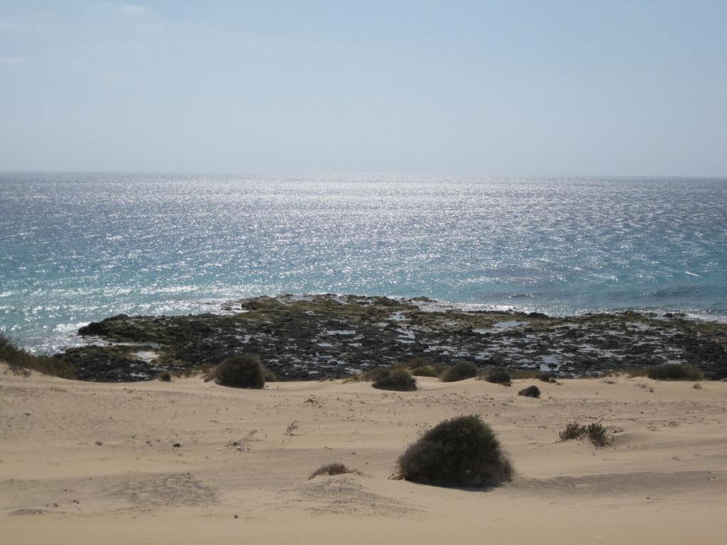 Fuerteventura Mai2009 (63).JPG