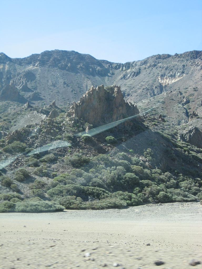 Tenerife Mai 2008 (455).JPG