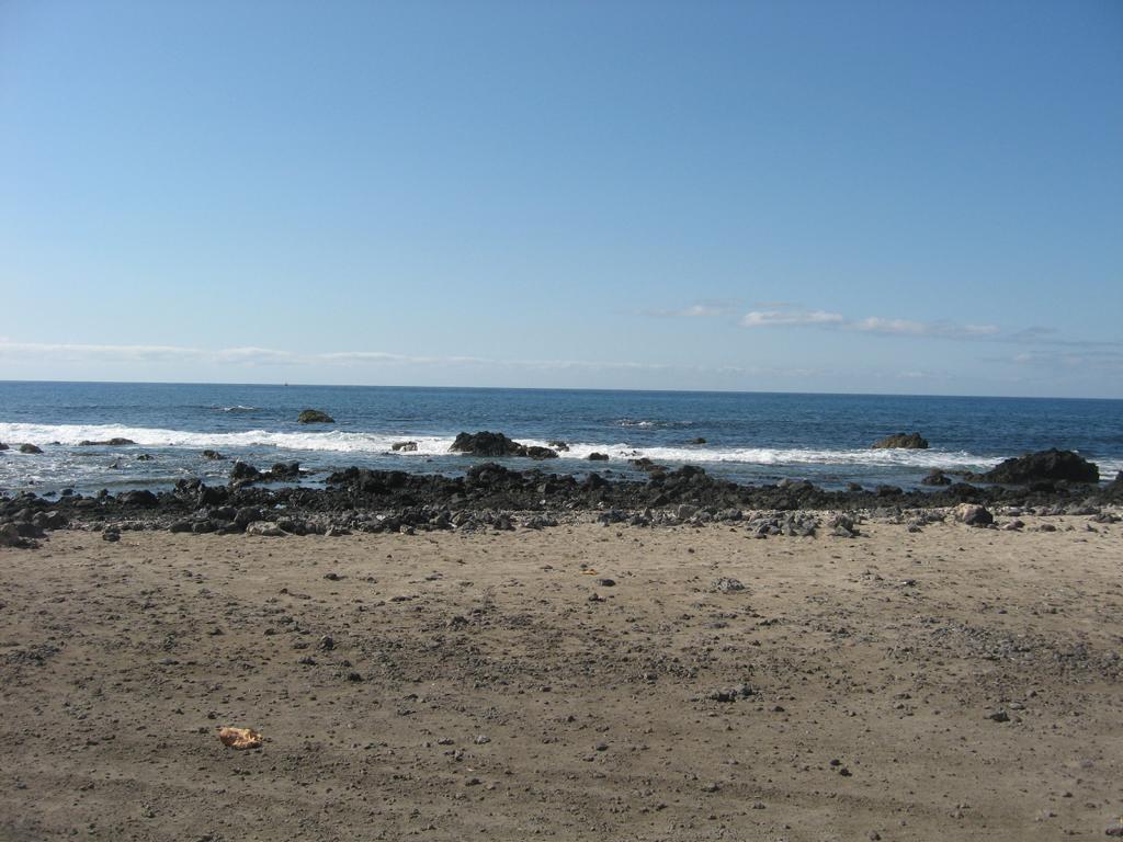 Tenerife Mai 2008 (28).JPG