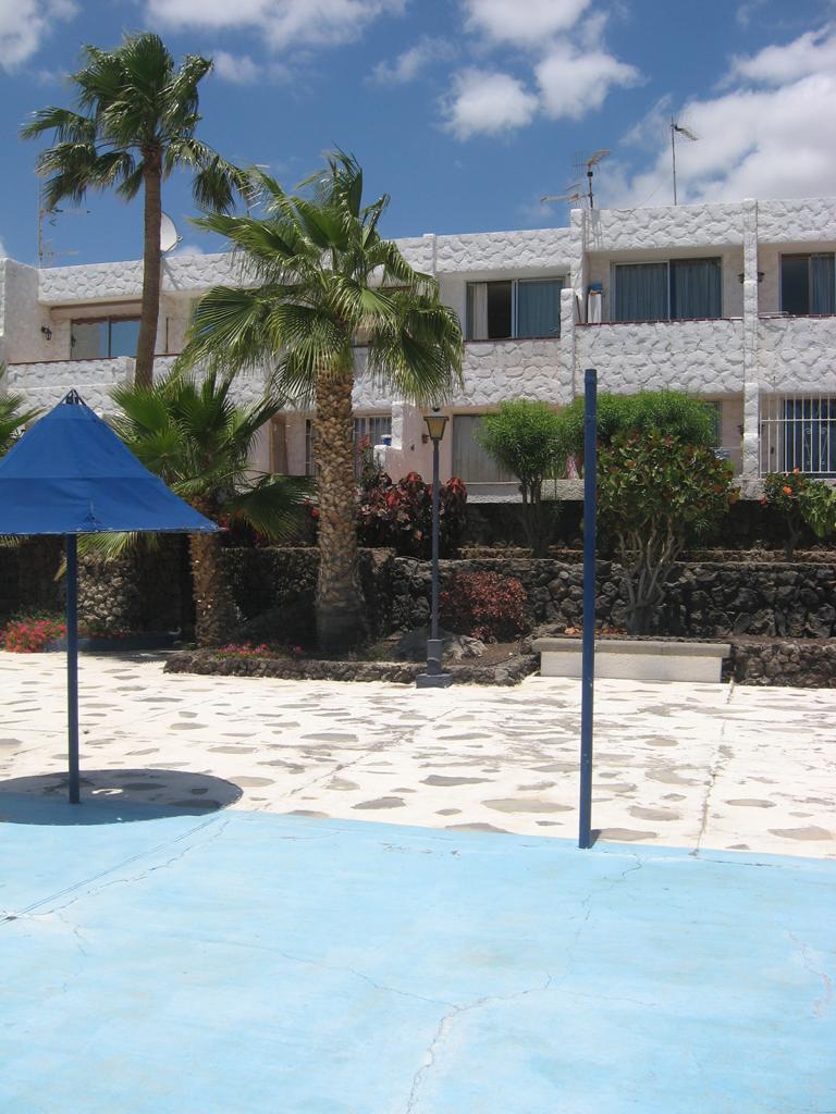 Tenerife Mai 2008 (1).JPG