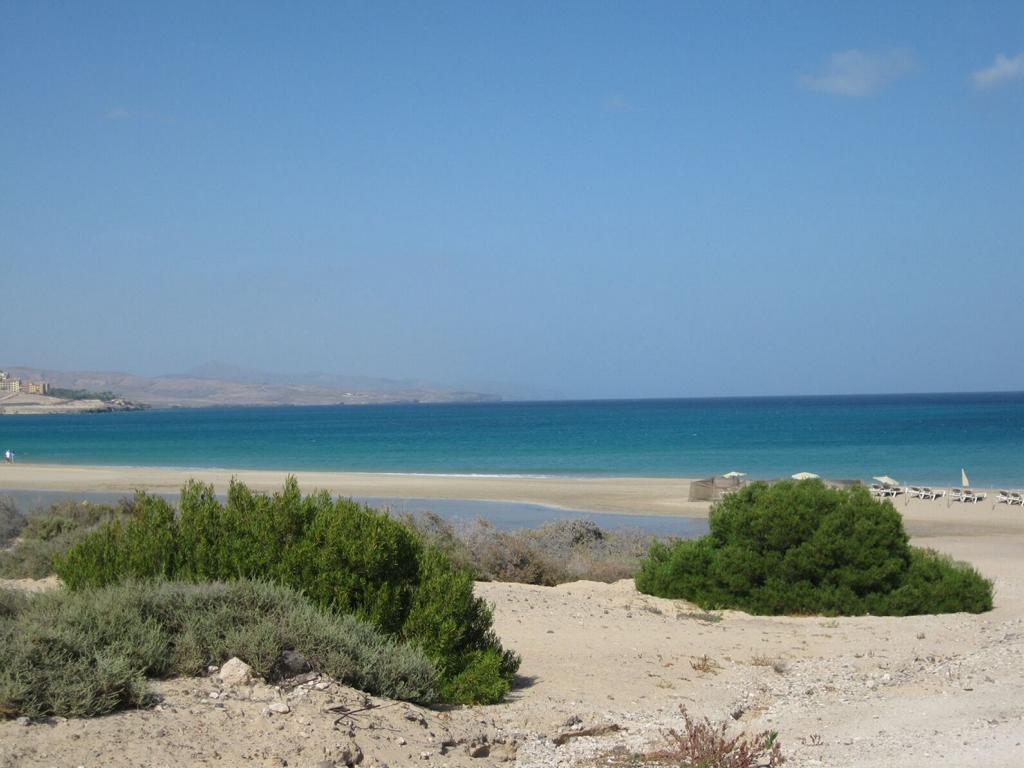 Fuerteventura Mai2009 (54).JPG