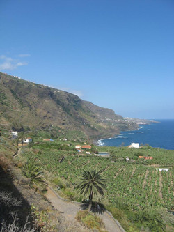 Tenerife Mai 2008 (238).JPG