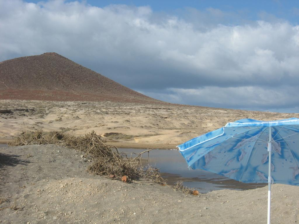 Tenerife Mai 2008 (118).JPG