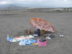Tenerife Mai 2008 (159).JPG