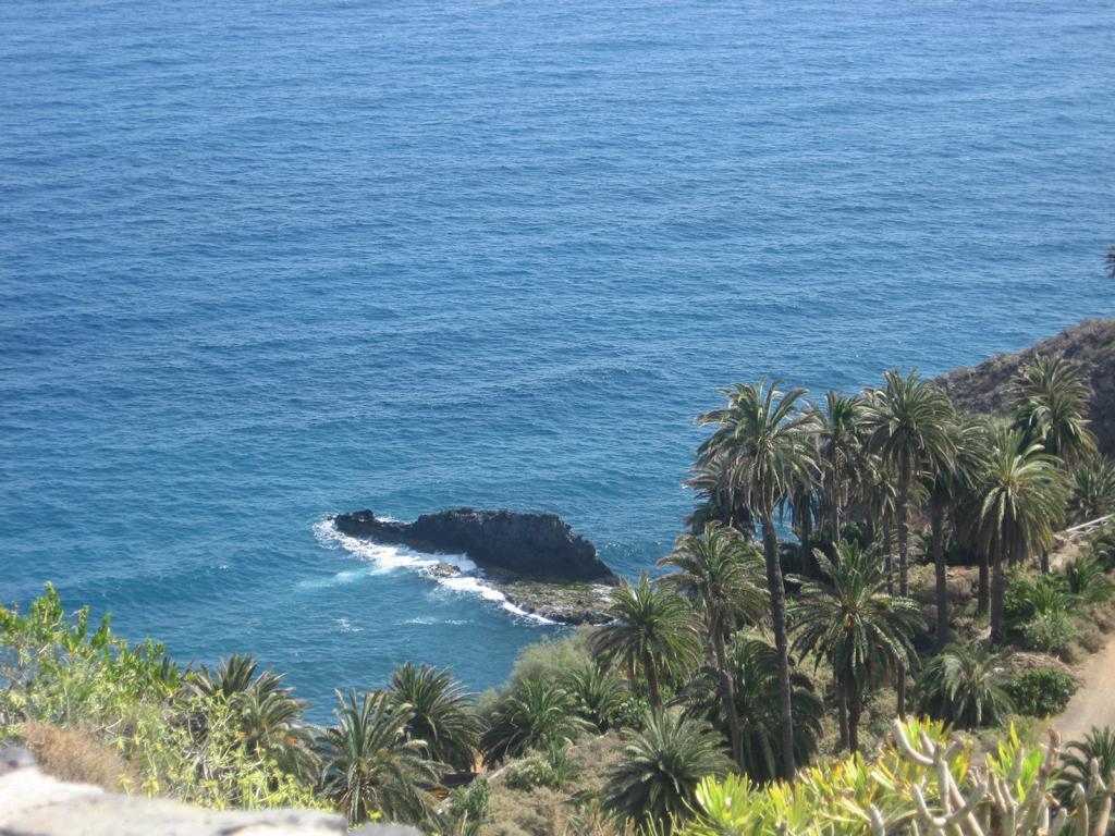 Tenerife Mai 2008 (234).JPG
