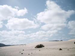 Leben auf Fuerte 2001 (97)