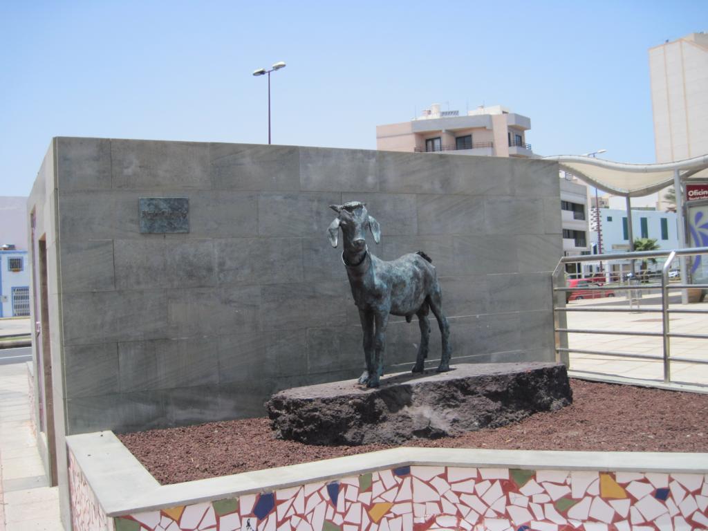 Fuerteventura Juni 2011 (19).JPG