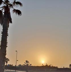 Fuerteventura Febr 2020 web (75)