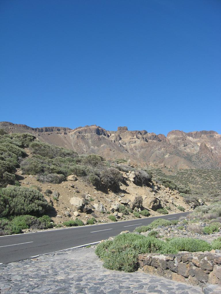 Tenerife Mai 2008 (463).JPG