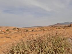 Fuerteventura Febr 2020 web (18)