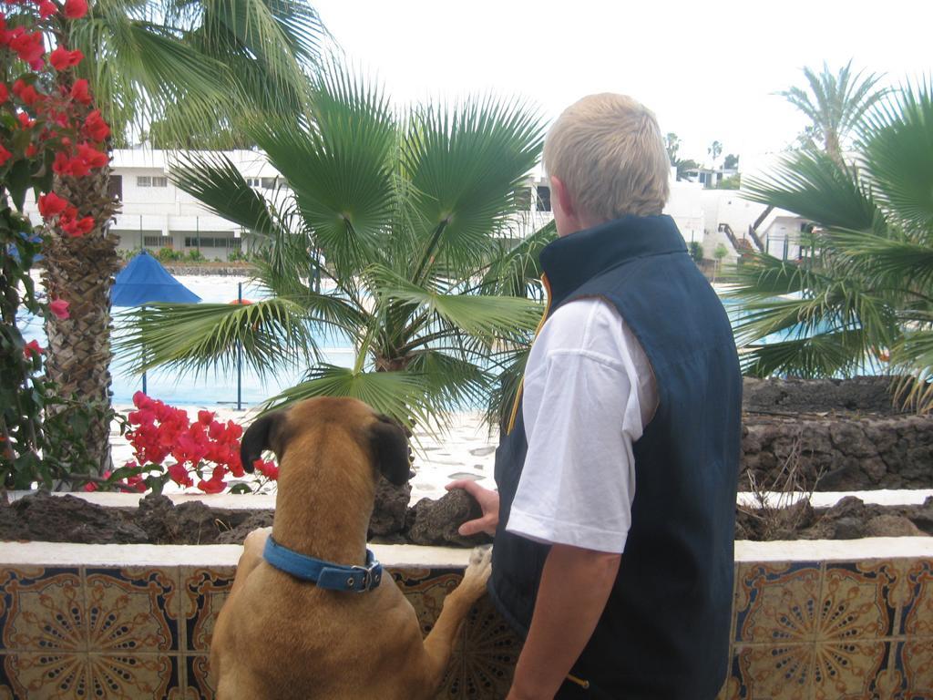 Tenerife Mai 2008 (163).JPG