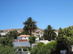 Fuerteventura Juni 2011 (53).JPG