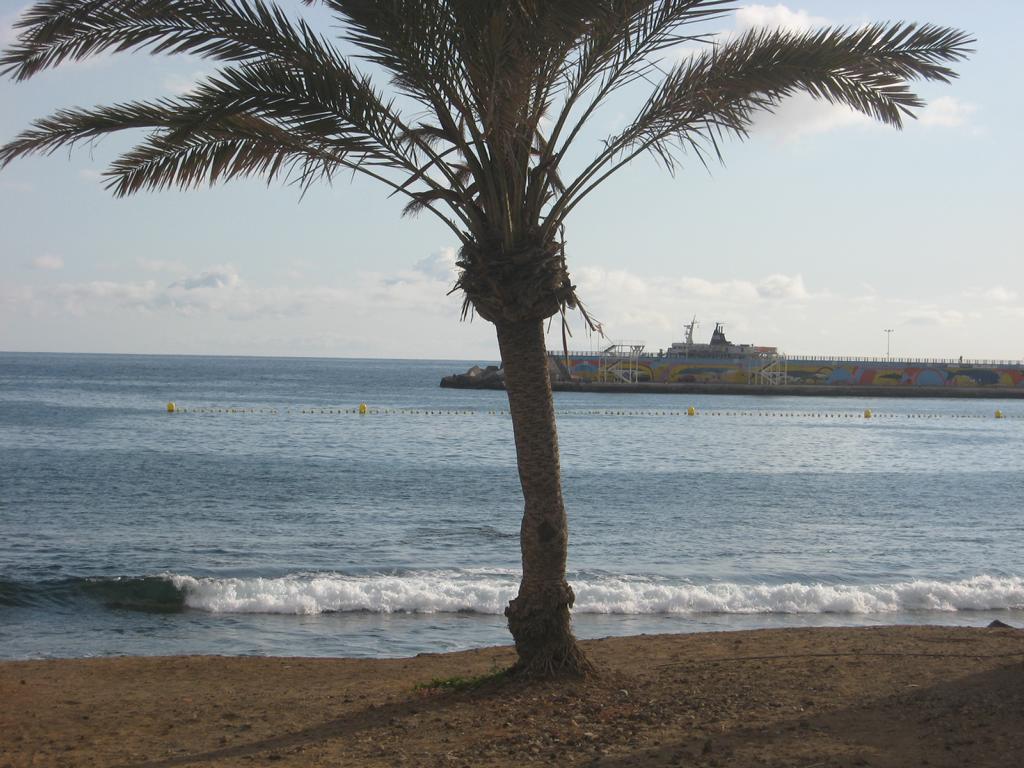 Tenerife Mai 2008 (55).JPG
