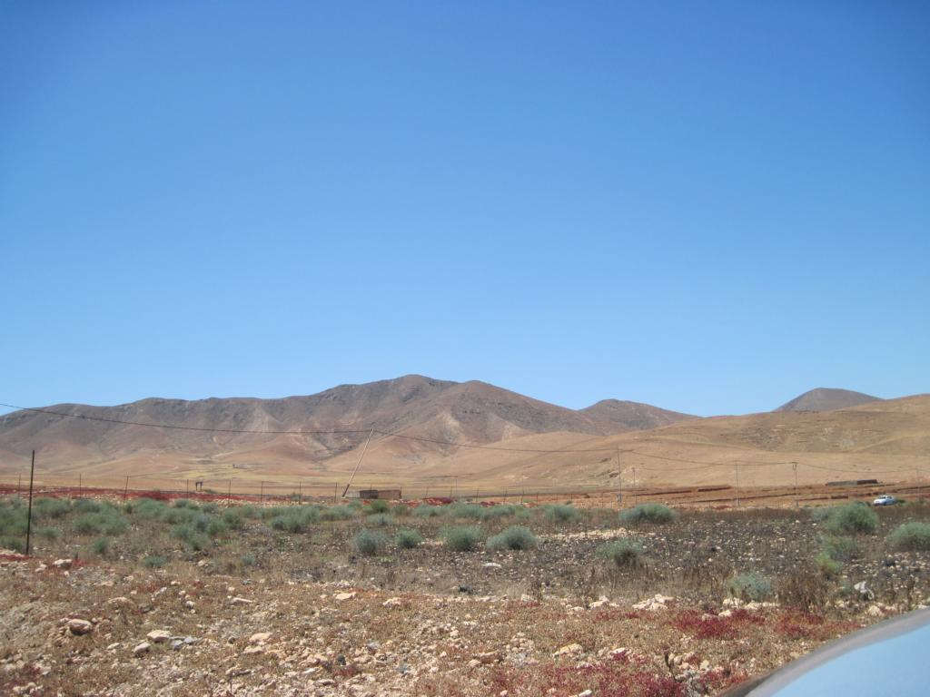Fuerteventura Juni 2011 (65).JPG