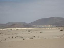 Fuerteventura Mai2009 (65).JPG
