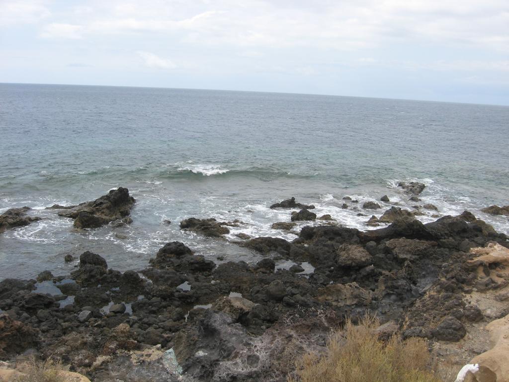 Tenerife Mai 2008 (89).JPG