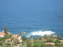 Tenerife Mai 2008 (242).JPG