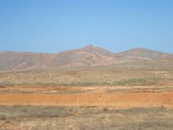 Fuerteventura Juni 2011 (35).JPG