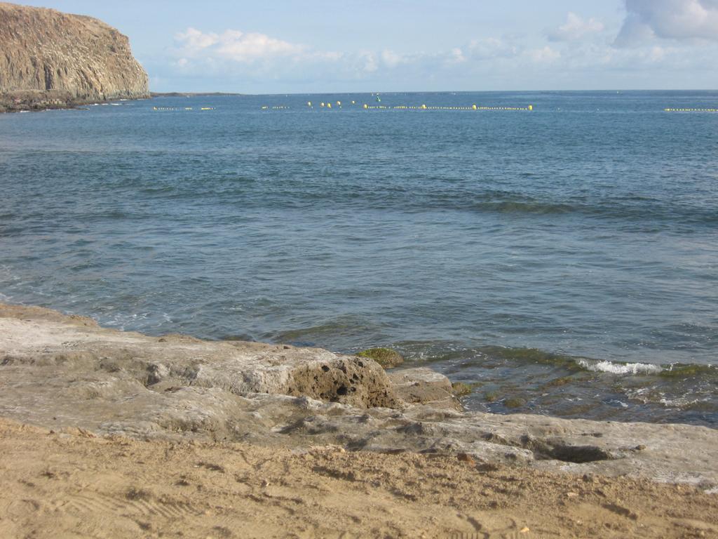 Tenerife Mai 2008 (61).JPG