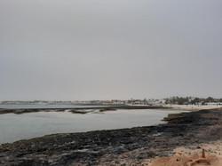 Fuerteventura Febr 2020 web (73)