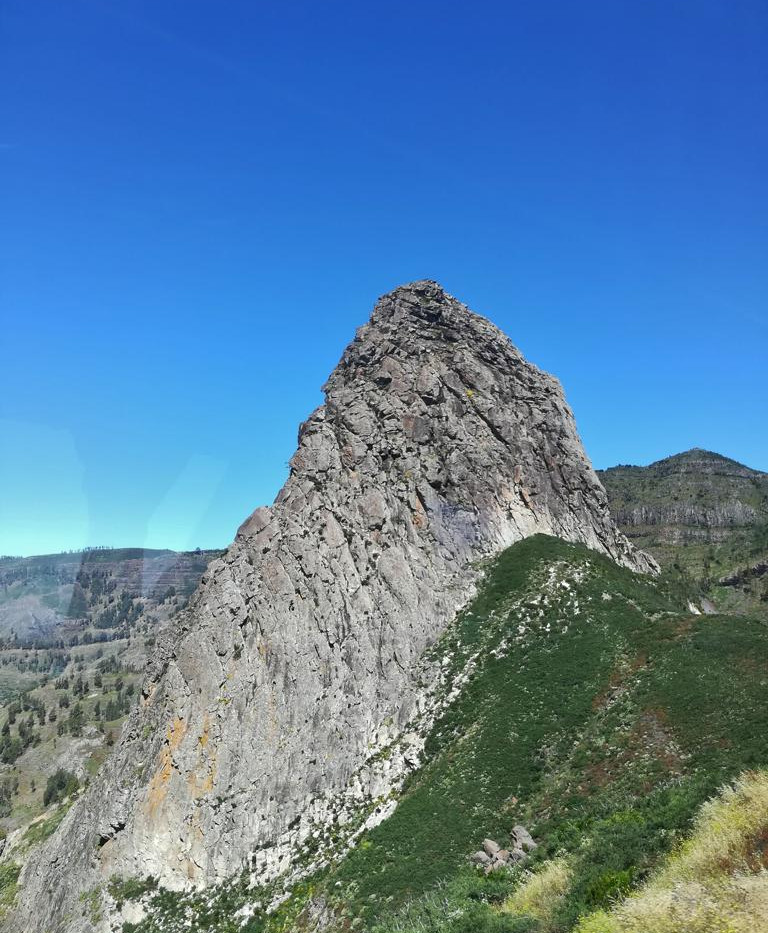 TF 07062018 La Gomera (49).JPG