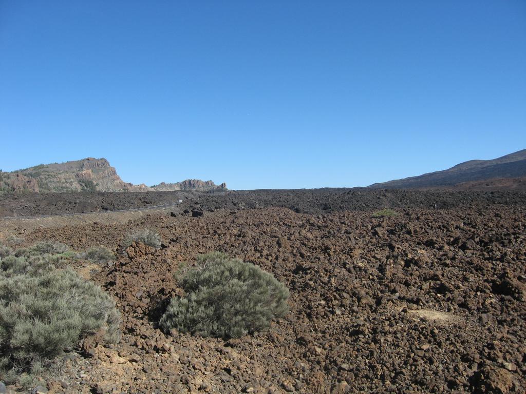 Tenerife Mai 2008 (437).JPG