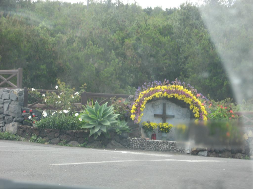 Tenerife Mai 2008 (265).JPG