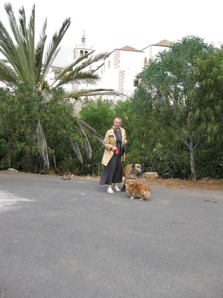 Fuerteventura Mai2009 (37).JPG