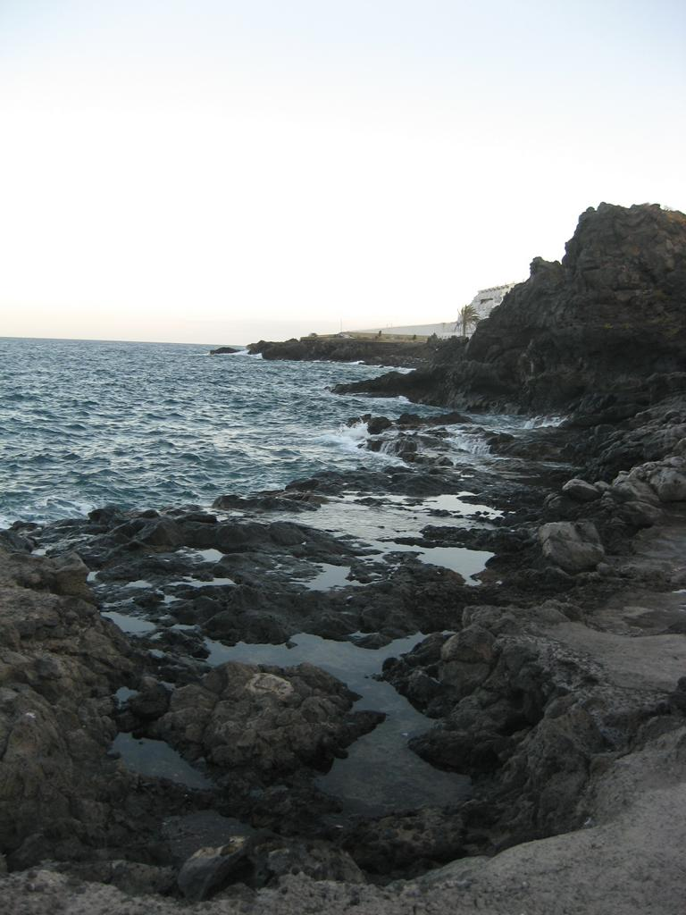 Tenerife Mai 2008 (12).JPG