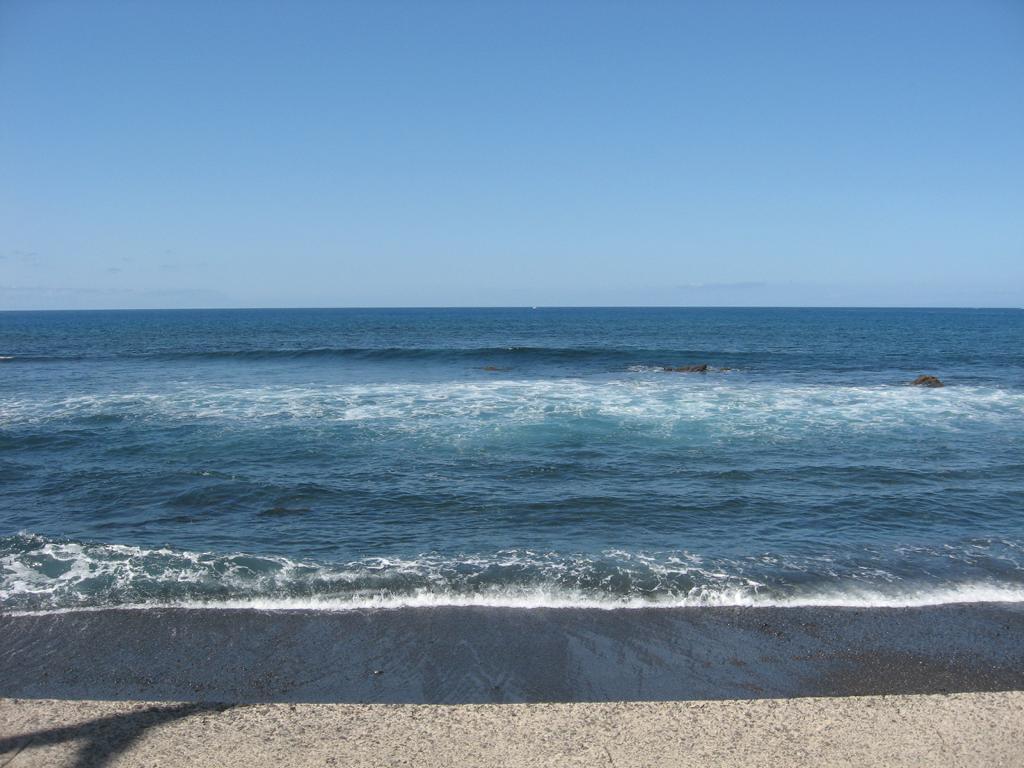 Tenerife Mai 2008 (36).JPG
