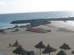 Tenerife Mai 2008 (135).JPG