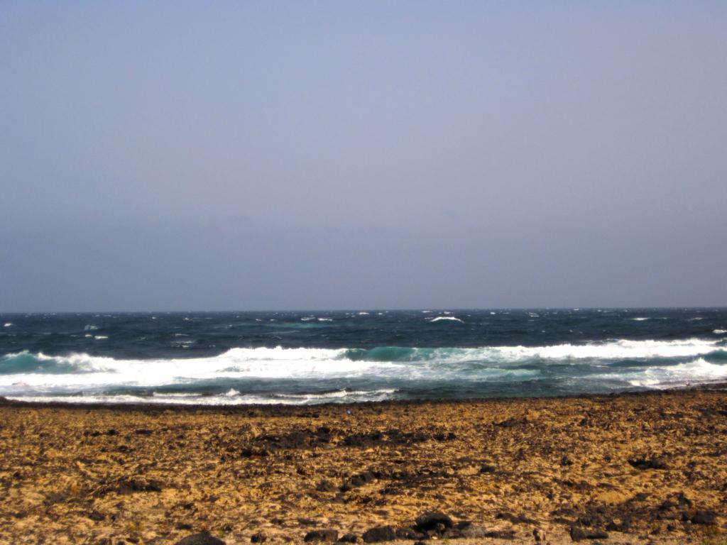 Fuerteventura Juni 2011 (5).JPG