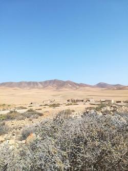 Fuerteventura 08 2018 (22)