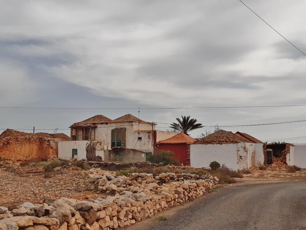 Fuerteventura Febr 2020 web (20)