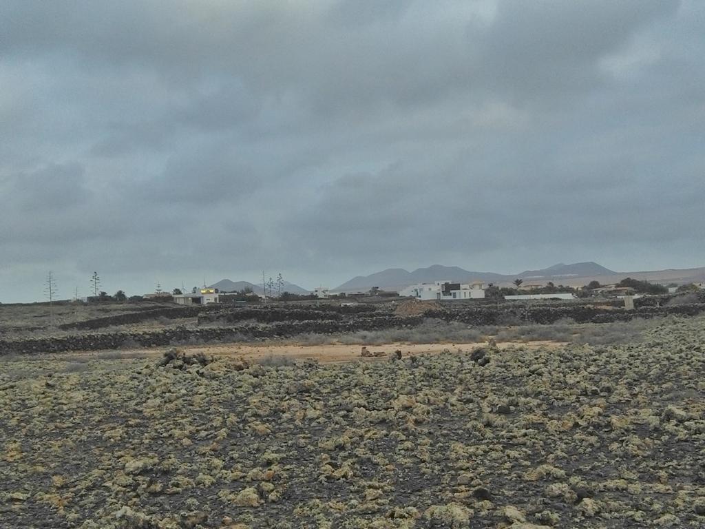 Fuerteventura Febr 2020 web (100)