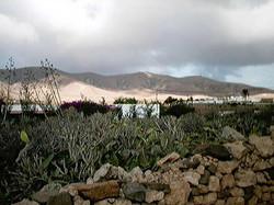 Leben auf Fuerte 2001 (108)