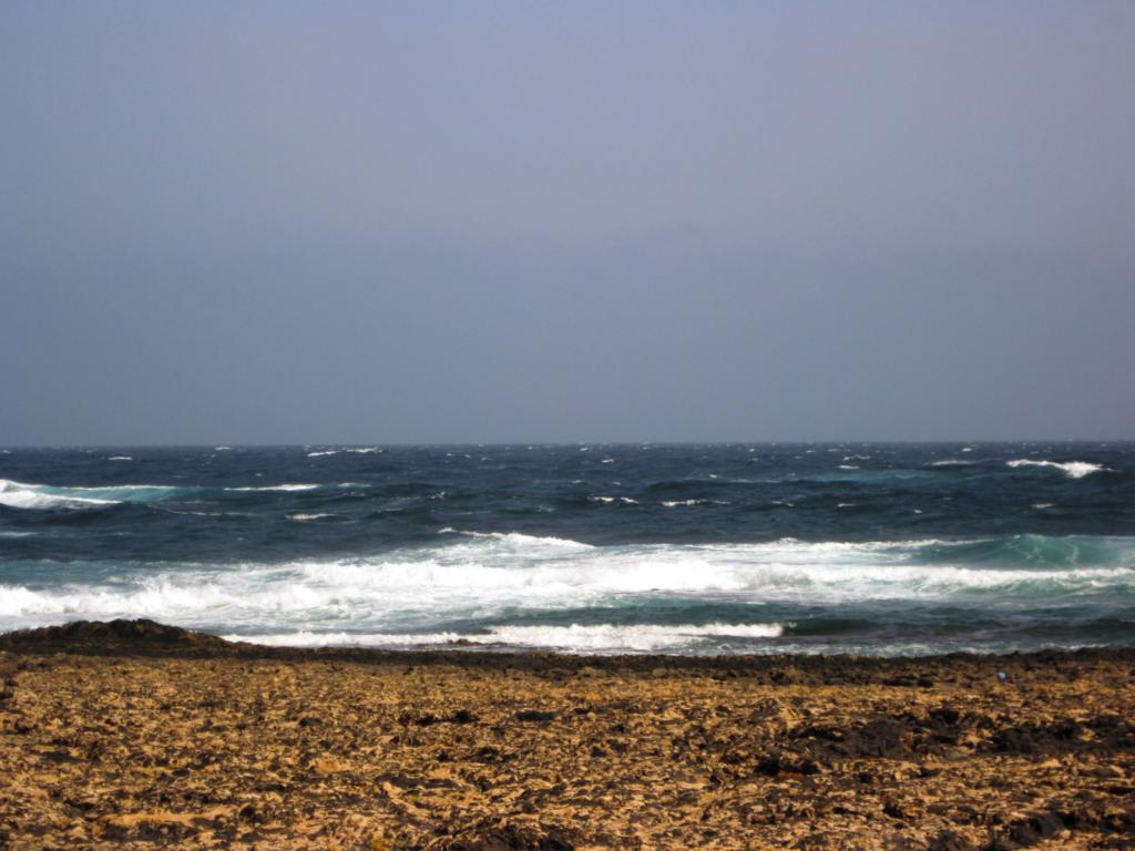 Fuerteventura Juni 2011 (6).JPG