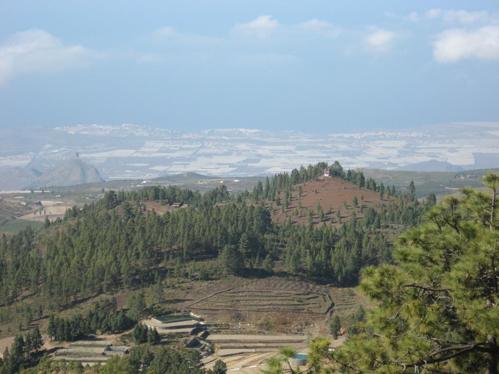 Tenerife Mai 2008 (411).JPG