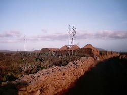 Leben auf Fuerte 2001 (129)