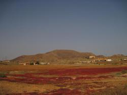 Fuerteventura Juni 2011 (3).JPG