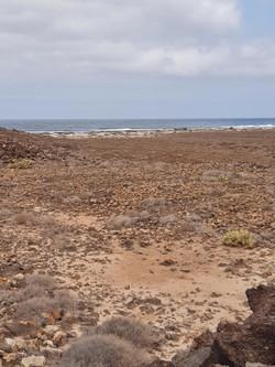 Fuerteventura Febr 2020 web (94)