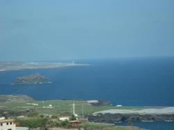 Tenerife Mai 2008 (257).JPG