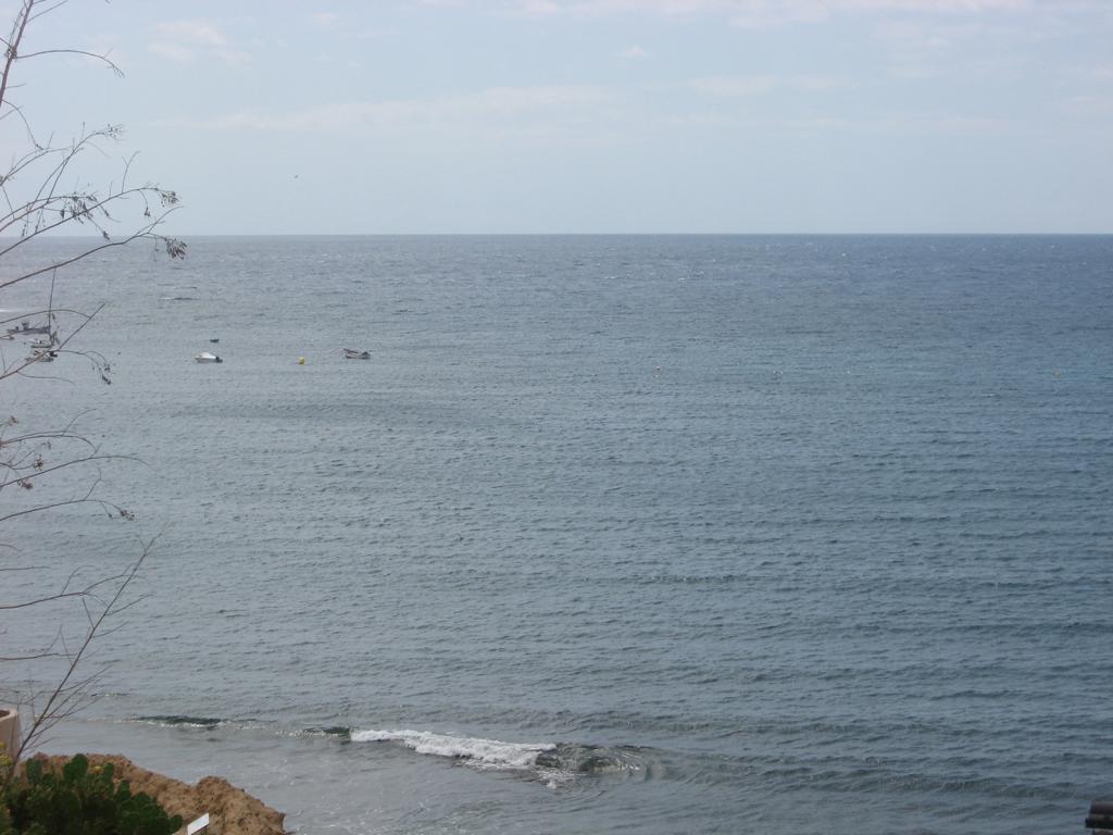 Tenerife Mai 2008 (78).JPG