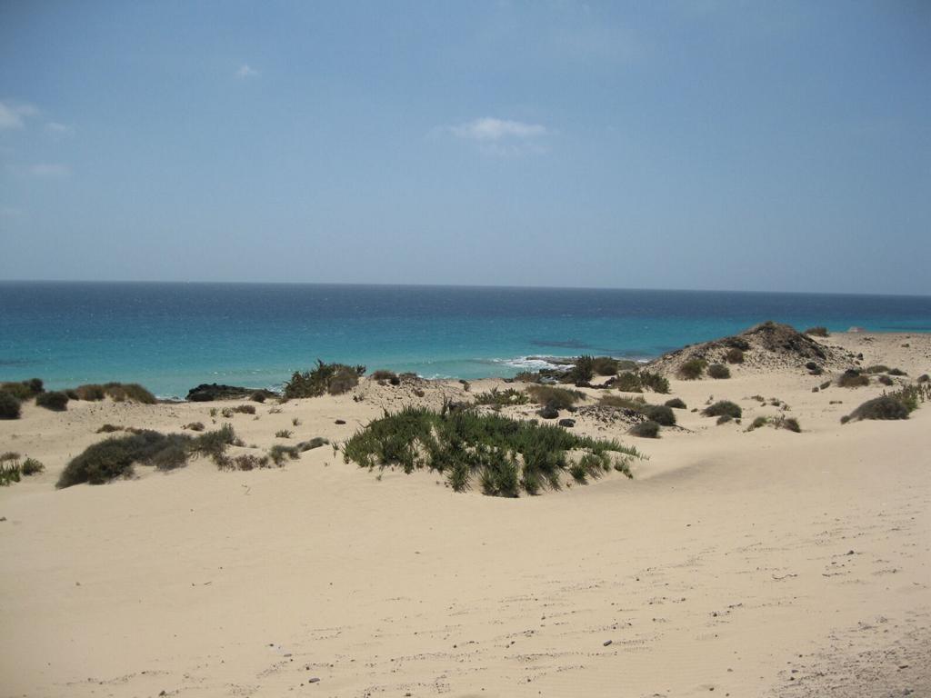 Fuerteventura Mai2009 (66).JPG