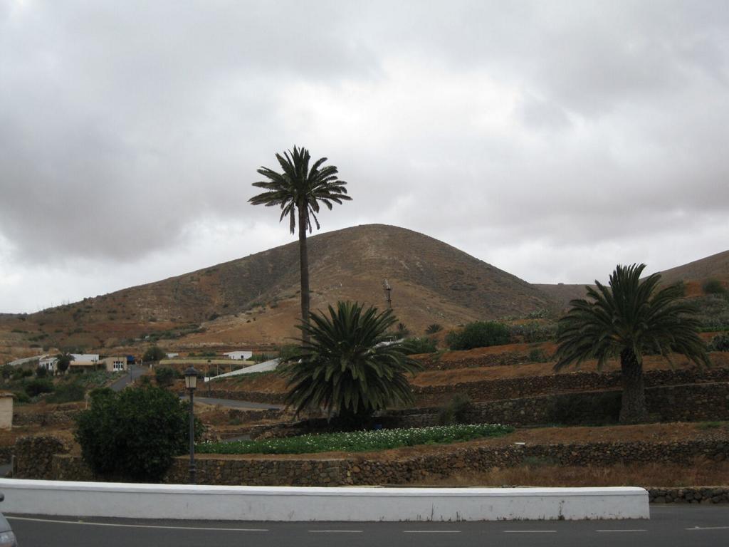 Fuerteventura Mai2009 (40).JPG