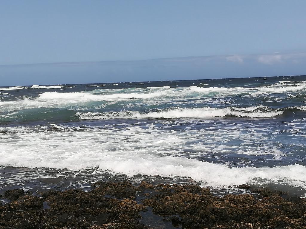 Fuerteventura 08 2018 (36)