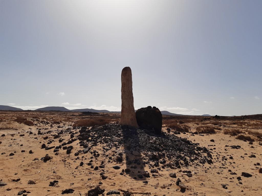 Fuerteventura Febr 2020 web (27)