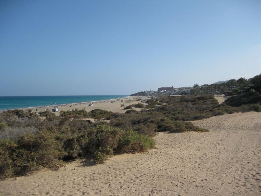 Fuerteventura Mai2009 (58).JPG